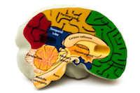 Alzheimer Symptome / Ursachen