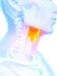 Kehlkopfentzuendung Symptome / Ursachen