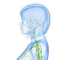Morbus Hodgkin Symptome & Ursachen