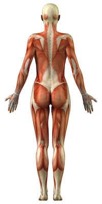 Morbus Pompe Symptome und Ursachen